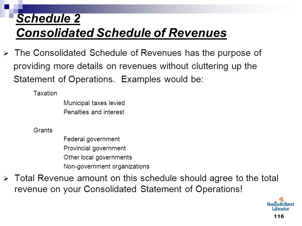 116 Schedule 2 Consolidated Schedule of Revenues  The Consolidated Schedule of Revenues has the purpose of providing more details on revenues without cluttering up the Statement of Operations.