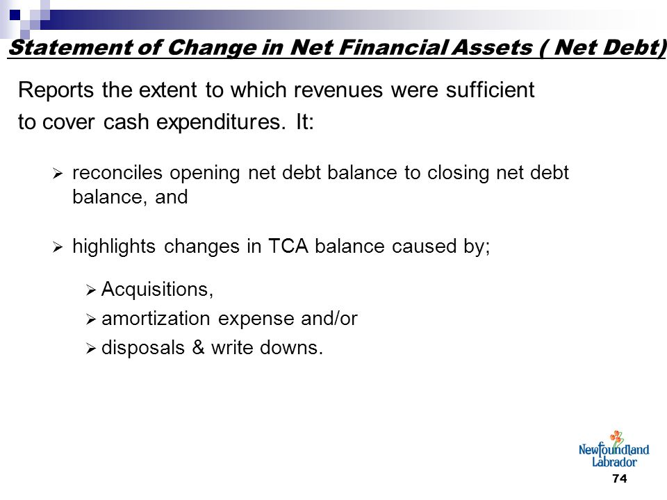 74 Statement of Change in Net Financial Assets ( Net Debt) Reports the extent to which revenues were sufficient to cover cash expenditures.
