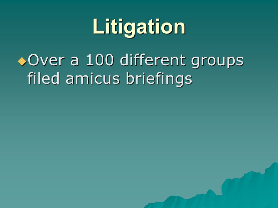 Litigation  Over a 100 different groups filed amicus briefings