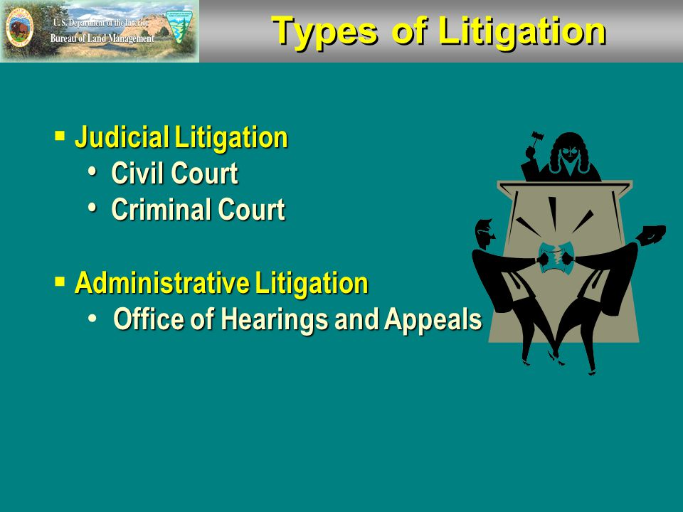Types of Litigation Judicial Litigation  Judicial Litigation Civil Court Civil Court Criminal Court Criminal Court Administrative Litigation  Administrative Litigation Office of Hearings and Appeals