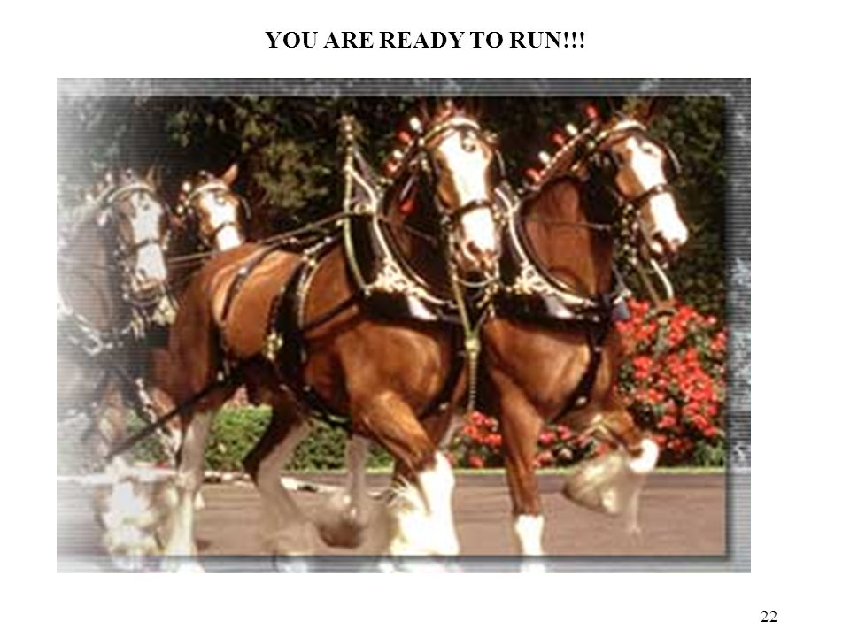 22 YOU ARE READY TO RUN!!!