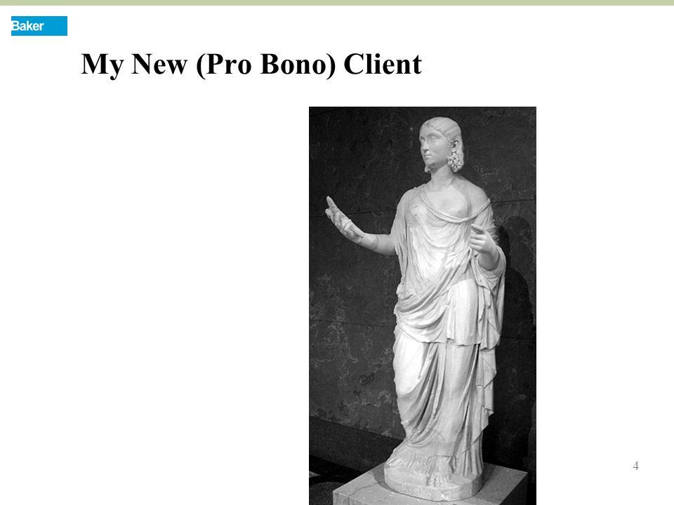 4 My New (Pro Bono) Client