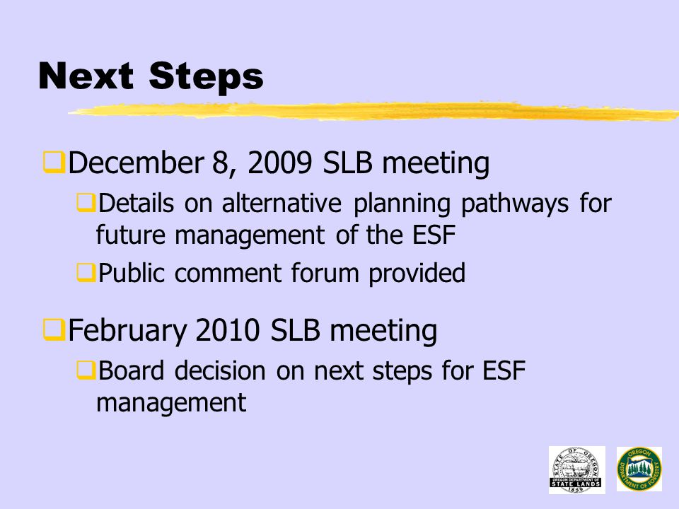 Next Steps  December 8, 2009 SLB meeting  Details on alternative planning pathways for future management of the ESF  Public comment forum provided