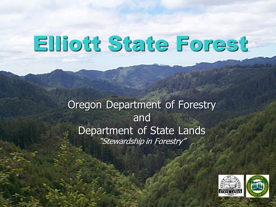 "Elliott State Forest Oregon Department of Forestry and Department of State Lands ""Stewardship in Forestry"""