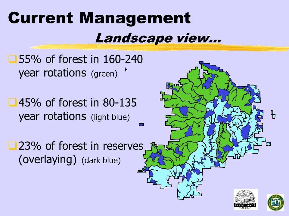 Current Management Landscape view...