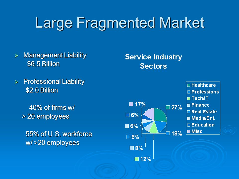 Large Fragmented Market  Management Liability $6.5 Billion $6.5 Billion  Professional Liability $2.0 Billion $2.0 Billion 40% of firms w/ 40% of fir