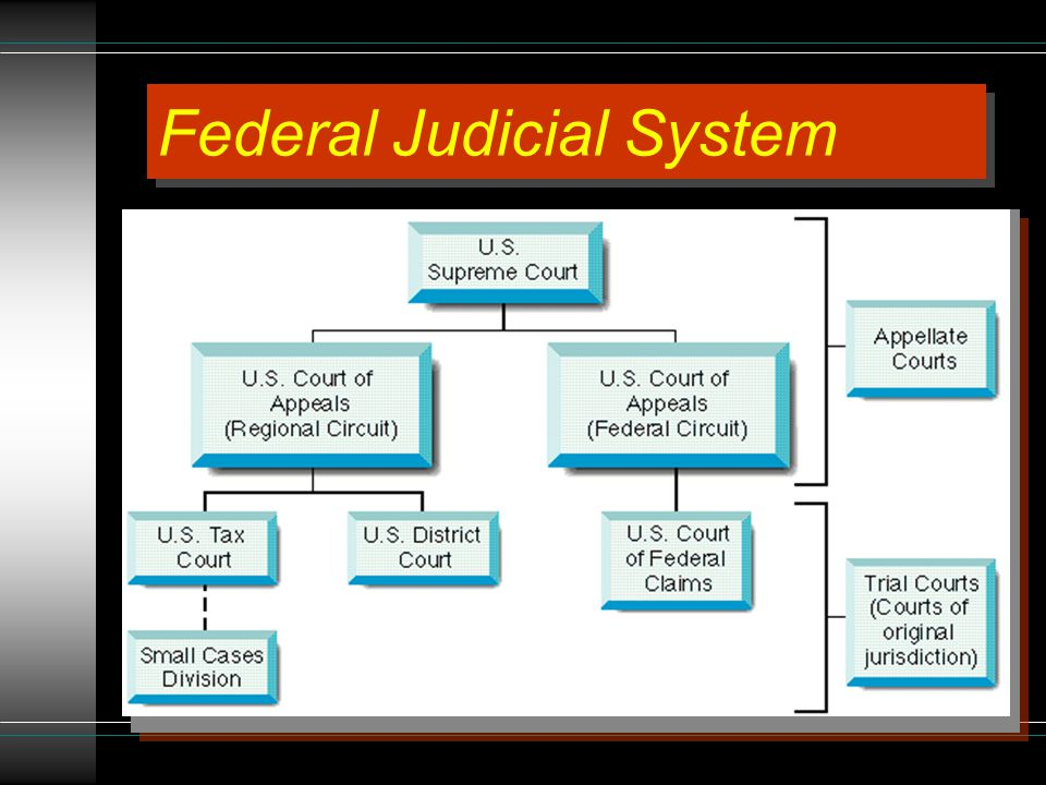 JURY SELECTION What criteria would you use to select jurors.