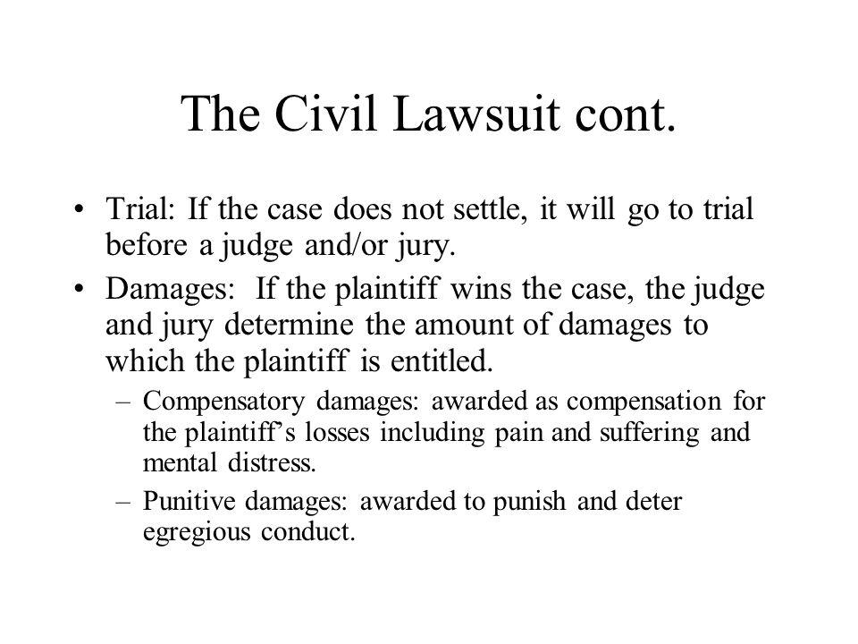 The Civil Lawsuit cont.