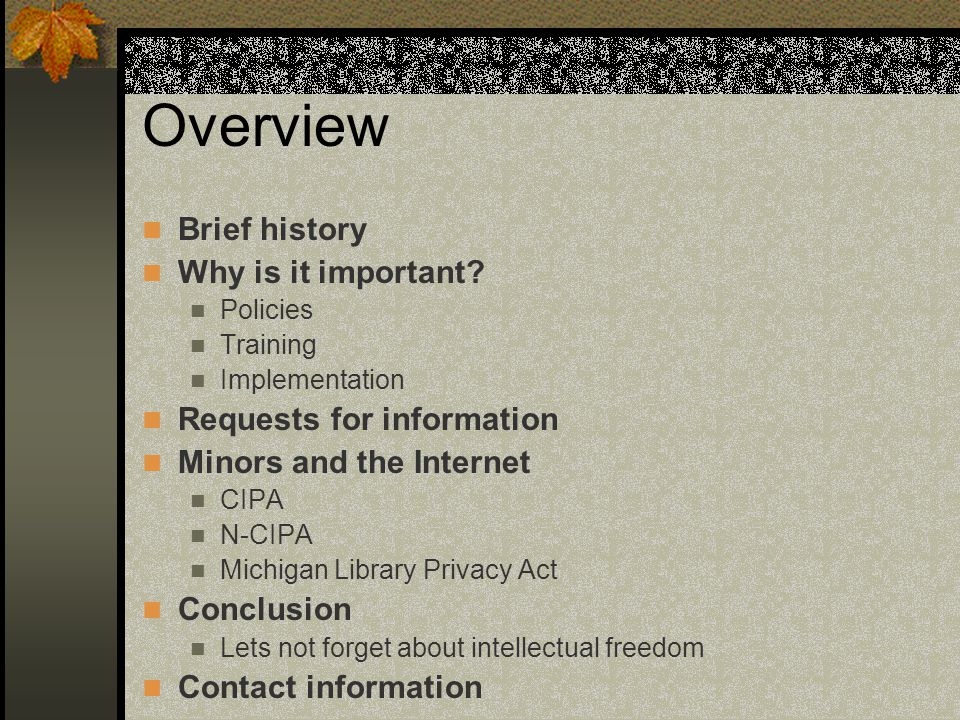 Overview Brief history Why is it important? Policies Training Implementation Requests for information Minors and the Internet CIPA N-CIPA Michigan Lib