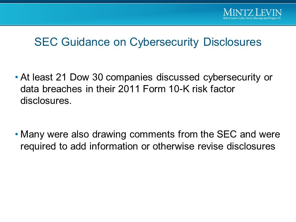 At least 21 Dow 30 companies discussed cybersecurity or data breaches in their 2011 Form 10-K risk factor disclosures.