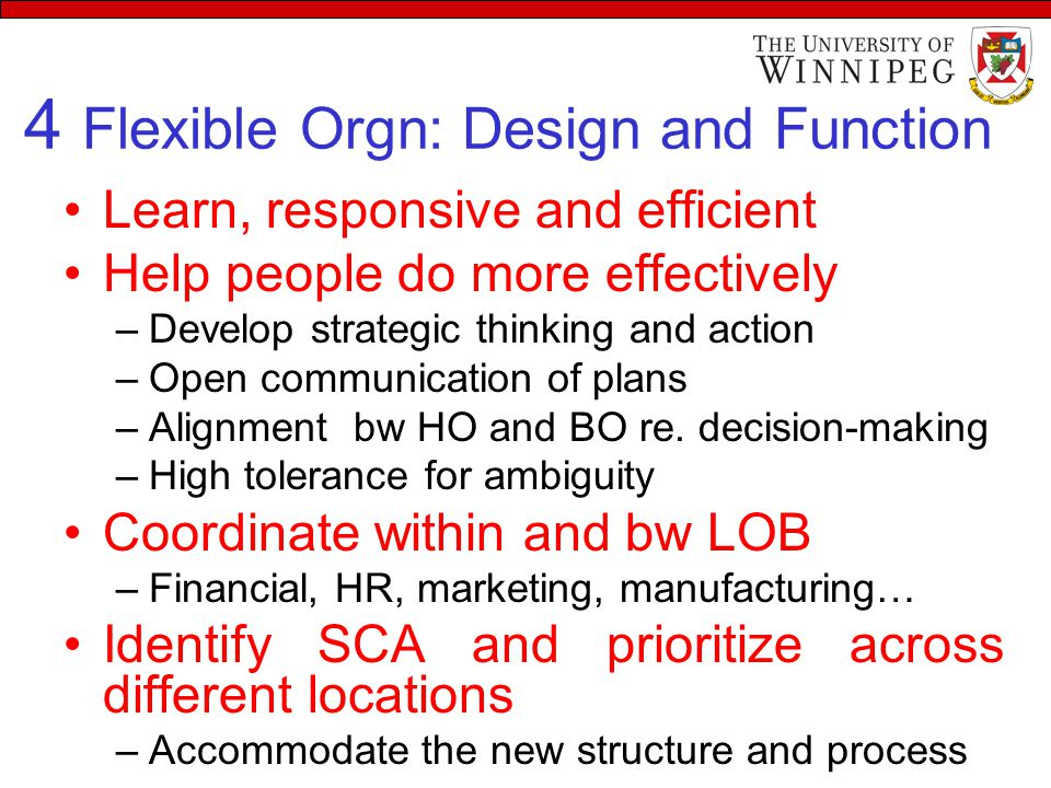 4 Flexible Orgn: Design and Function Learn, responsive and efficient Help people do more effectively –Develop strategic thinking and action –Open comm