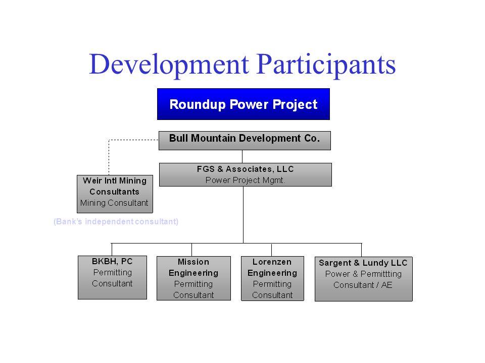 Development Participants (Bank's independent consultant)