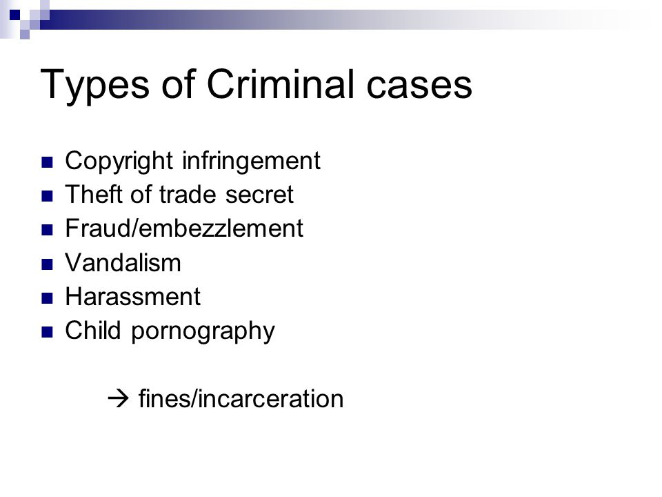 Types of Criminal cases Copyright infringement Theft of trade secret Fraud/embezzlement Vandalism Harassment Child pornography  fines/incarceration