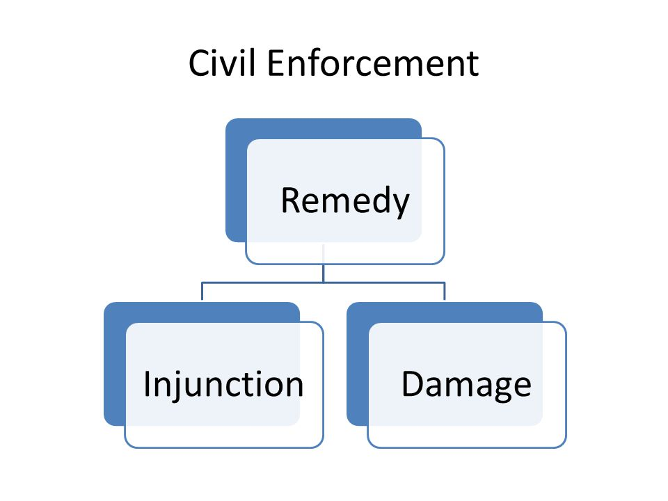 Civil Enforcement RemedyInjunctionDamage