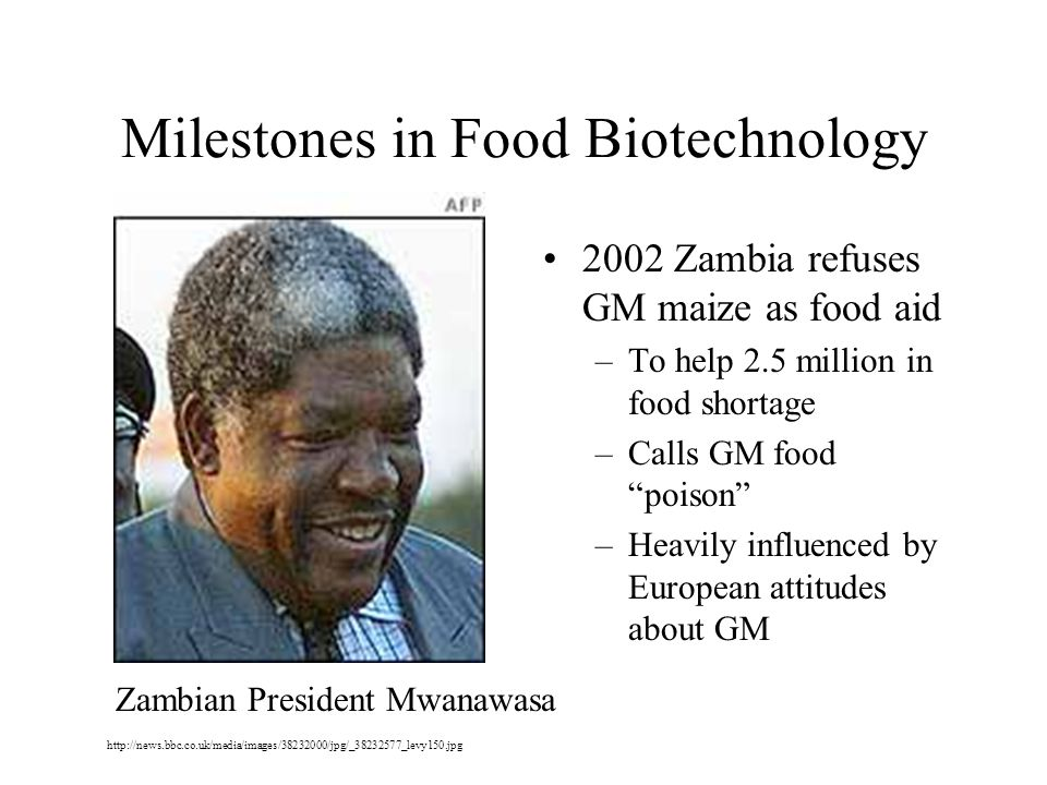 Milestones in Food Biotechnology 2002 Zambia refuses GM maize as food aid –To help 2.5 million in food shortage –Calls GM food poison –Heavily influenced by European attitudes about GM http://news.bbc.co.uk/media/images/38232000/jpg/_38232577_levy150.jpg Zambian President Mwanawasa