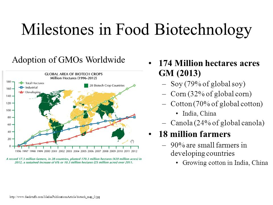 Milestones in Food Biotechnology 174 Million hectares acres GM (2013) –Soy (79% of global soy) –Corn (32% of global corn) –Cotton (70% of global cotton) India, China –Canola (24% of global canola) 18 million farmers –90% are small farmers in developing countries Growing cotton in India, China http://www.feedstuffs.com/Media/PublicationsArticle/biotech_map_0.jpg Adoption of GMOs Worldwide