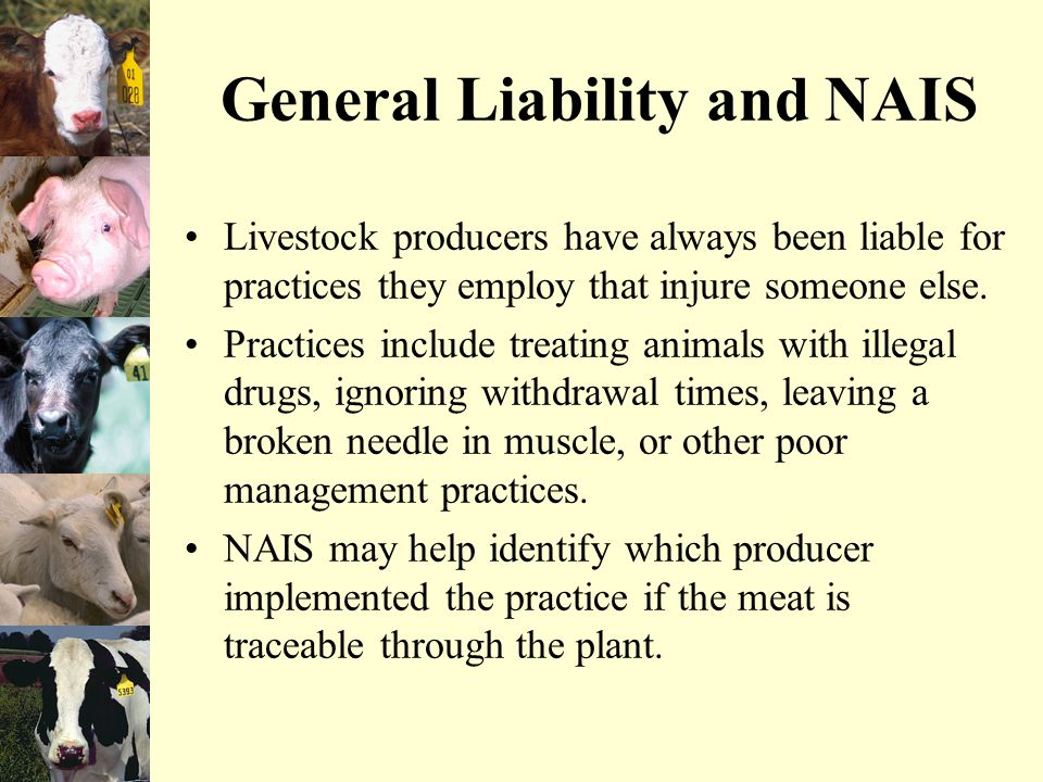 General Liability and NAIS Livestock producers have always been liable for practices they employ that injure someone else.
