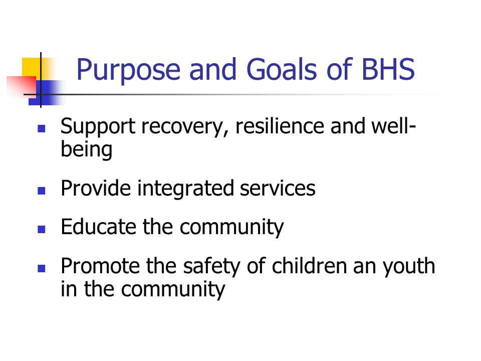Purpose and Goals of BHS Support recovery, resilience and well- being Provide integrated services Educate the community Promote the safety of children