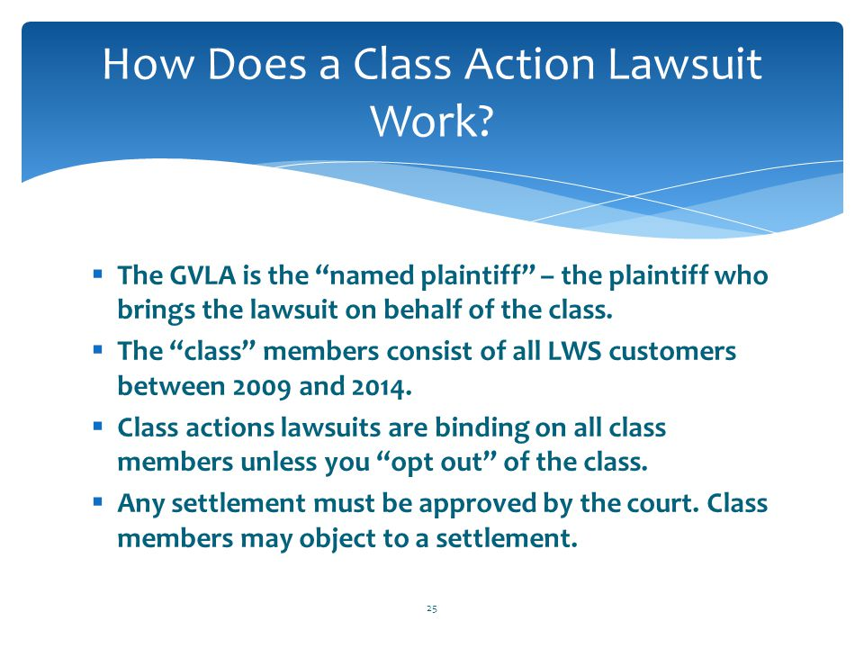 " The GVLA is the ""named plaintiff"" – the plaintiff who brings the lawsuit on behalf of the class.  The ""class"" members consist of all LWS customers"