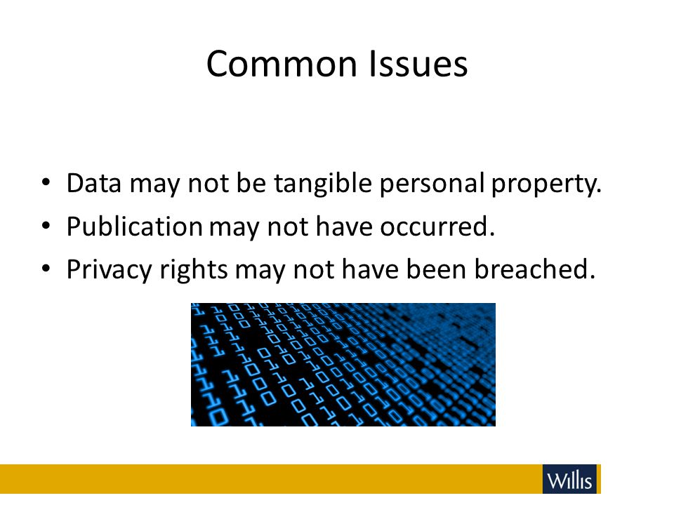 Common Issues Data may not be tangible personal property. Publication may not have occurred. Privacy rights may not have been breached.