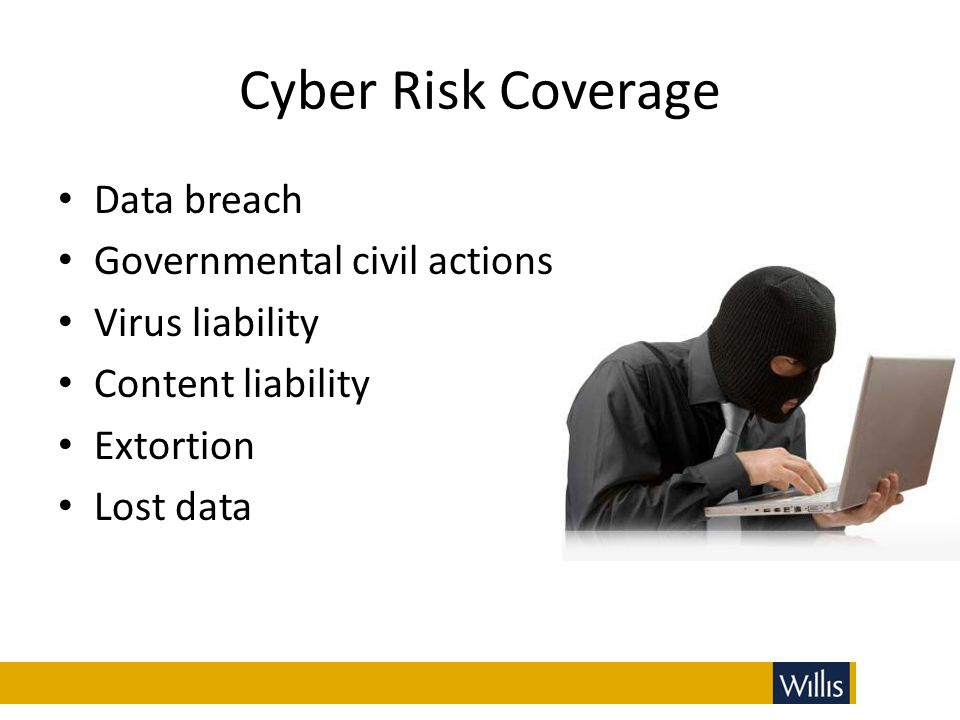 Cyber Risk Coverage Data breach Governmental civil actions Virus liability Content liability Extortion Lost data