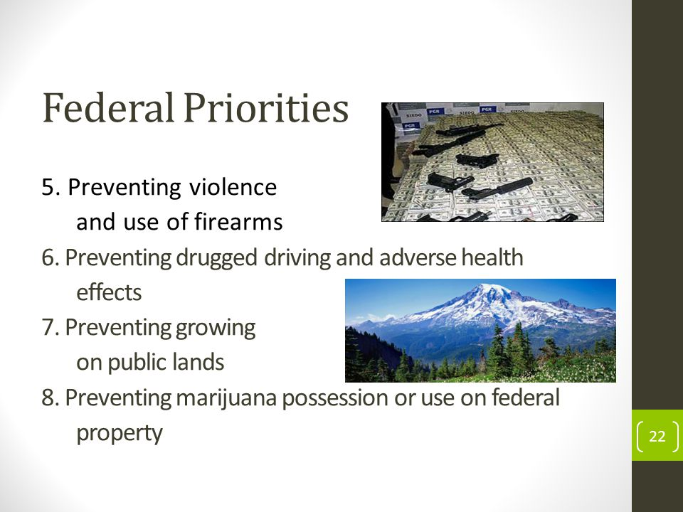 Federal Priorities 5. Preventing violence and use of firearms 6.