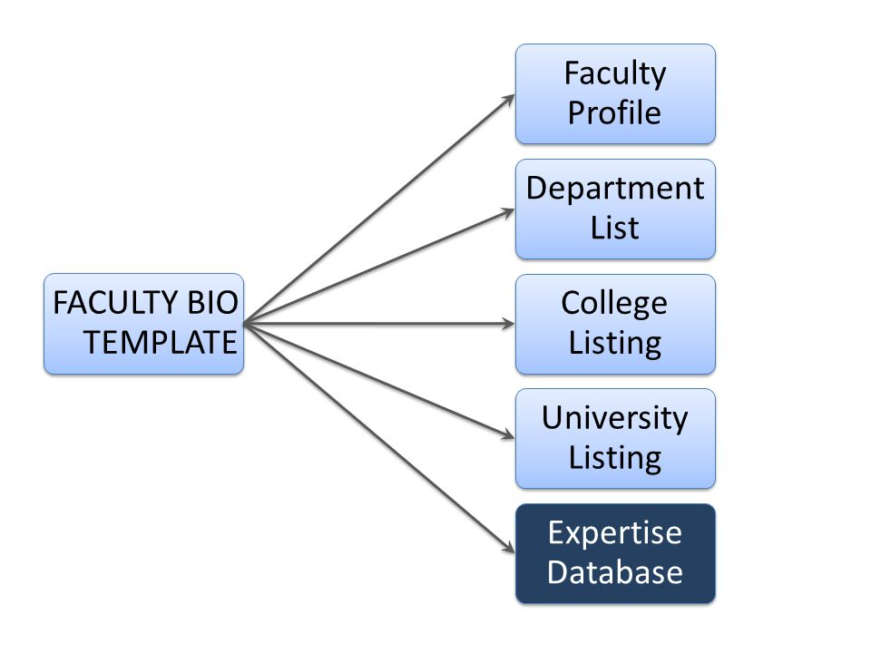 FACULTY BIO TEMPLATE Faculty Profile Department List College Listing University Listing Expertise Database