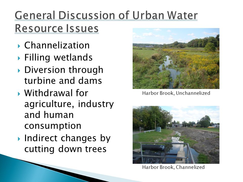  Channelization  Filling wetlands  Diversion through turbine and dams  Withdrawal for agriculture, industry and human consumption  Indirect changes by cutting down trees Harbor Brook, Unchannelized Harbor Brook, Channelized