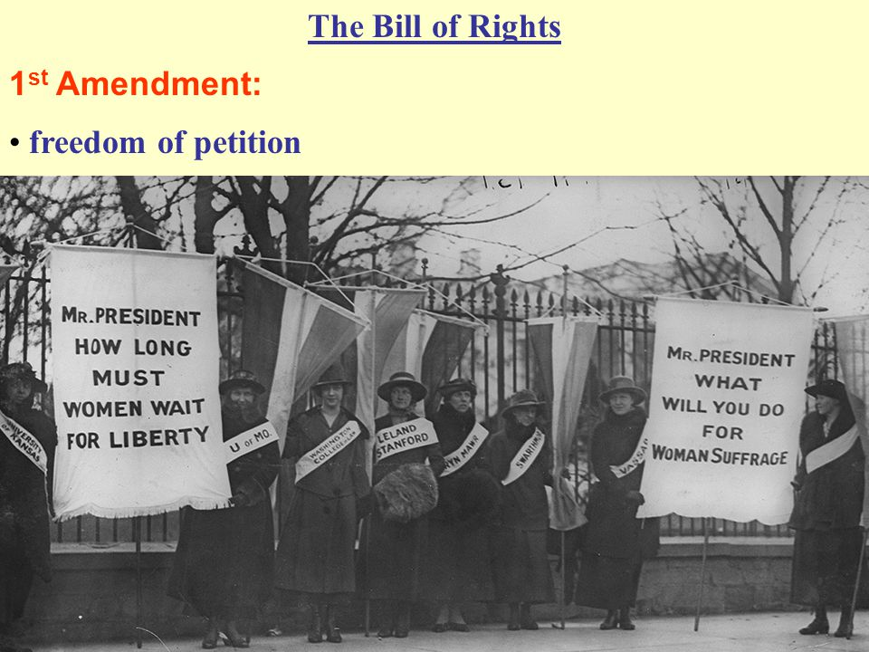 The Bill of Rights 1 st Amendment: freedom of petition