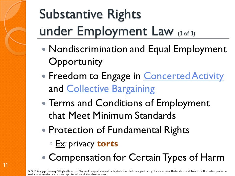 Substantive Rights under Employment Law (3 of 3) Nondiscrimination and Equal Employment Opportunity Freedom to Engage in Concerted Activity and Collec