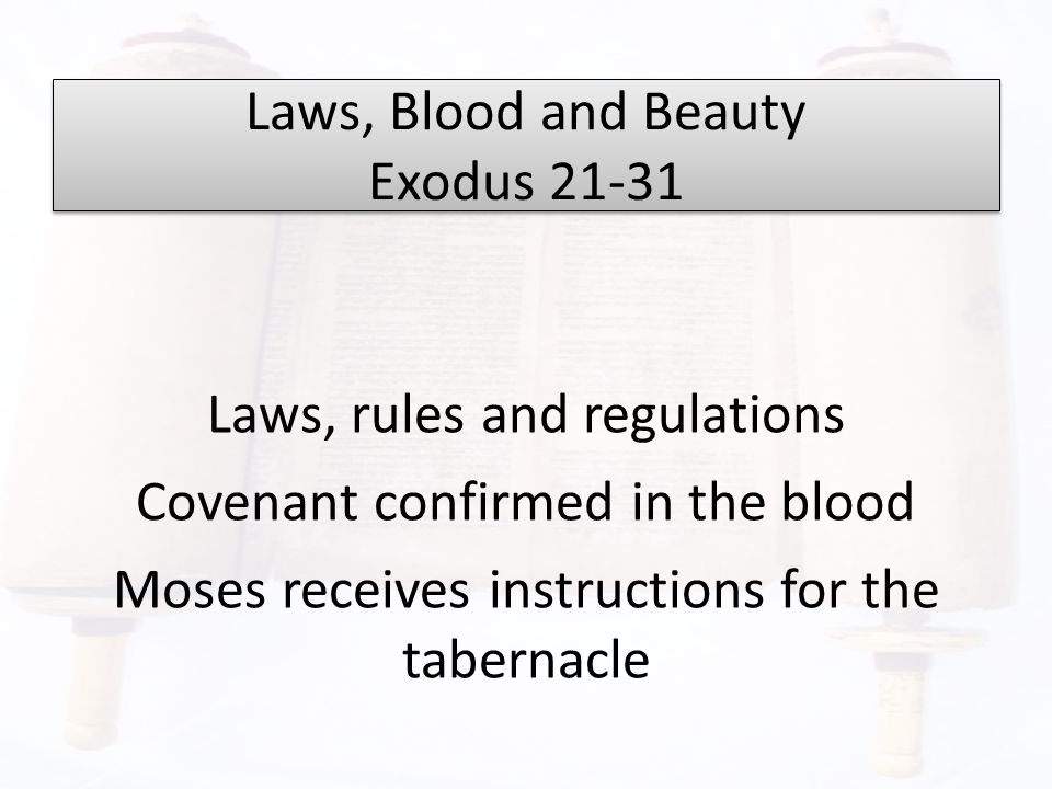 Laws, Blood and Beauty Exodus 21-31 Laws, rules and regulations Covenant confirmed in the blood Moses receives instructions for the tabernacle