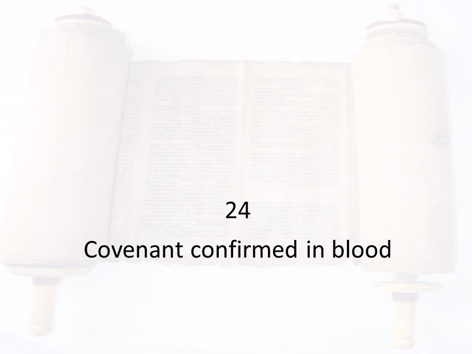 24 Covenant confirmed in blood