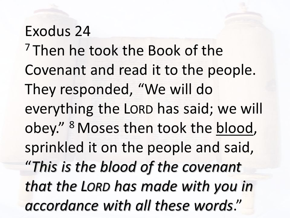 Exodus 24 This is the blood of the covenant that the L ORD has made with you in accordance with all these words 7 Then he took the Book of the Covenant and read it to the people.
