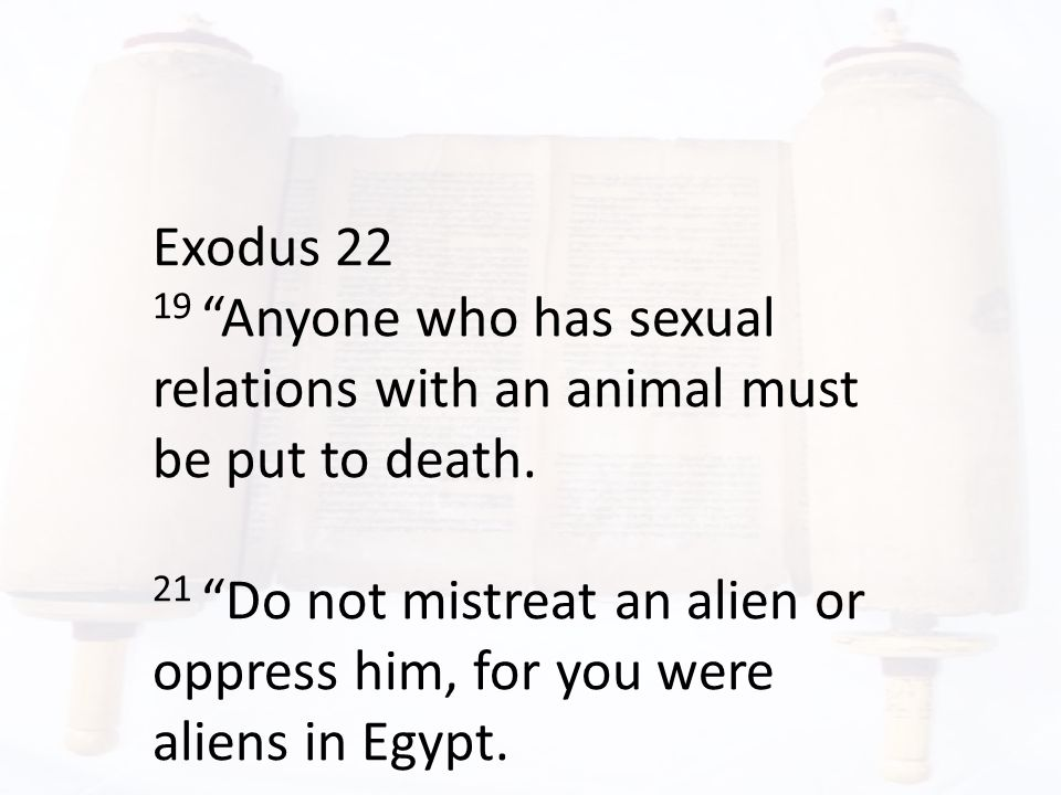 Exodus 22 19 Anyone who has sexual relations with an animal must be put to death.