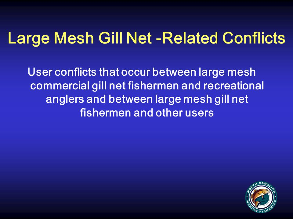 Large Mesh Gill Net -Related Conflicts User conflicts that occur between large mesh commercial gill net fishermen and recreational anglers and between