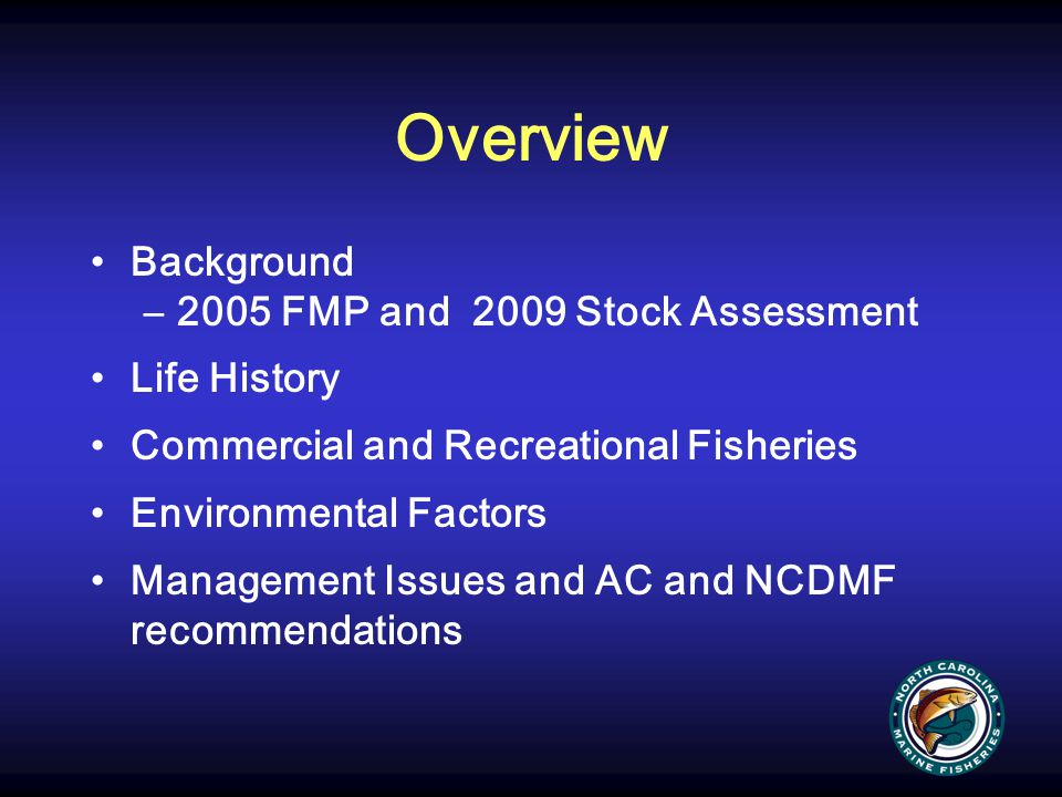 AC and DMF Recommendations Commercial: Status quo (large mesh gill net management measures implemented by sea turtle lawsuit settlement), which results in an overall commercial harvest reduction of 22.2% Recreational: Increase the minimum size limit to 15 inches and decrease the creel limit to 6 fish, which results in an overall recreational harvest reduction of 20.2%