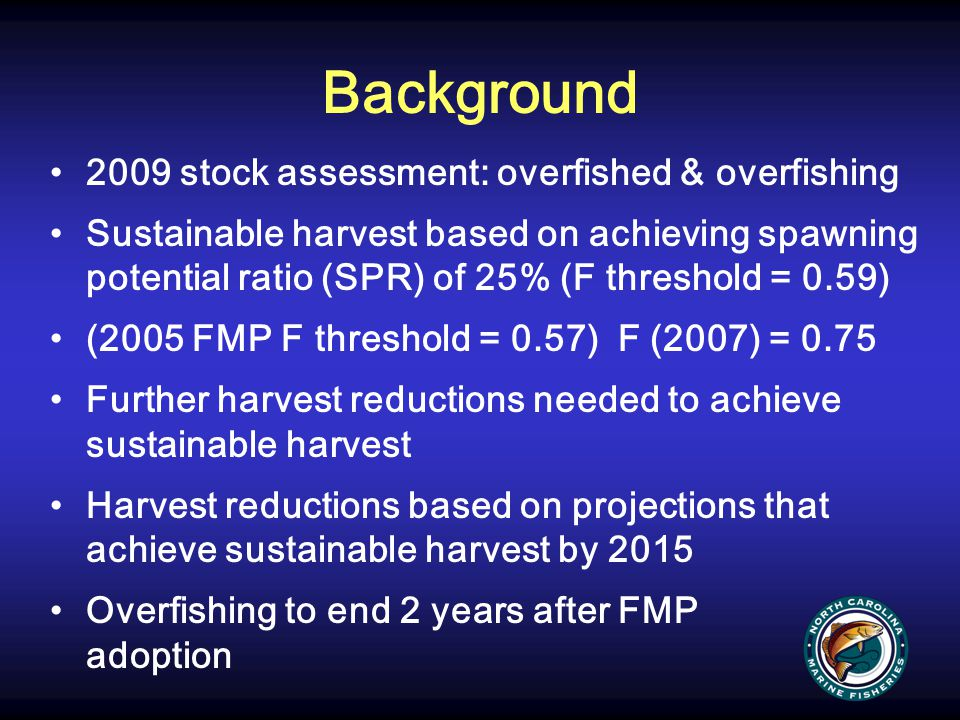 Management Options Status quo Management measures specifically for the ocean flounder fisheries that reduce adult harvest of southern flounder