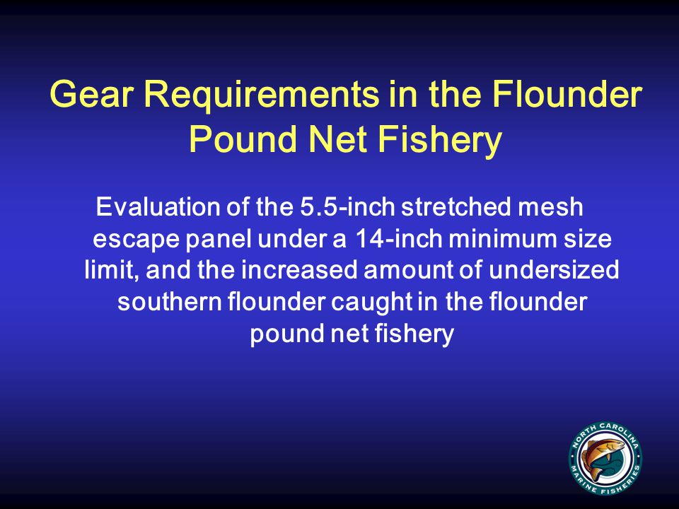 Gear Requirements in the Flounder Pound Net Fishery Evaluation of the 5.5-inch stretched mesh escape panel under a 14-inch minimum size limit, and the