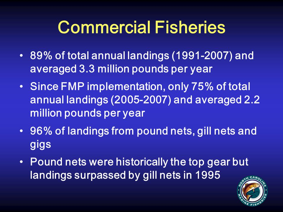 Commercial Fisheries 89% of total annual landings (1991-2007) and averaged 3.3 million pounds per year Since FMP implementation, only 75% of total ann
