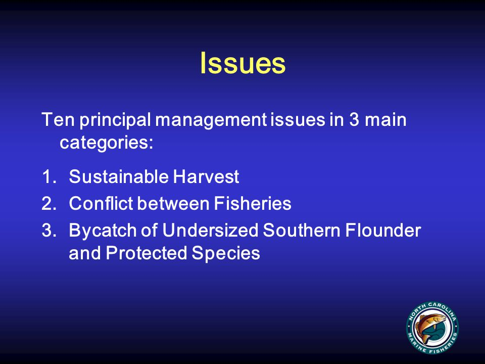 Issues Ten principal management issues in 3 main categories: 1.Sustainable Harvest 2.Conflict between Fisheries 3.Bycatch of Undersized Southern Floun