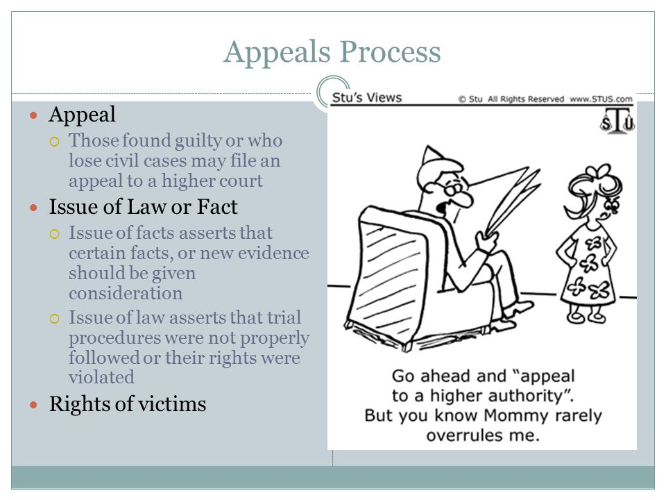 Appeals Process Appeal  Those found guilty or who lose civil cases may file an appeal to a higher court Issue of Law or Fact  Issue of facts asserts that certain facts, or new evidence should be given consideration  Issue of law asserts that trial procedures were not properly followed or their rights were violated Rights of victims