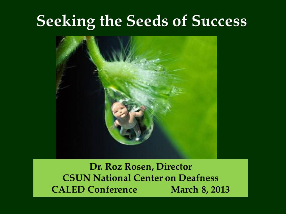 Seeking the Seeds of Success Dr.