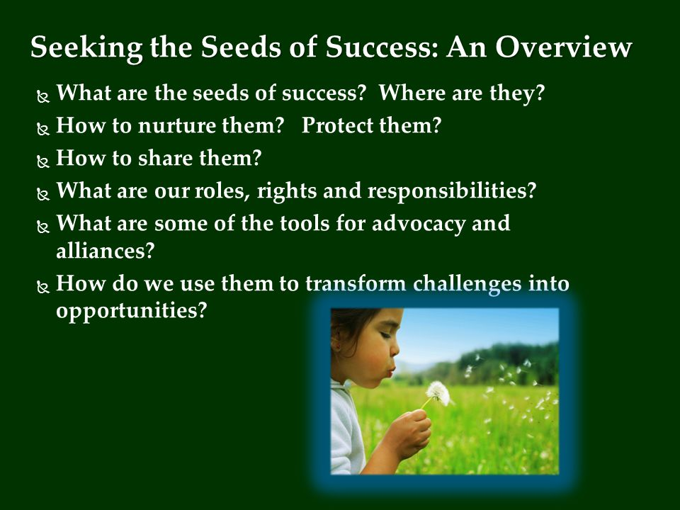 Seeking the Seeds of Success Dr.