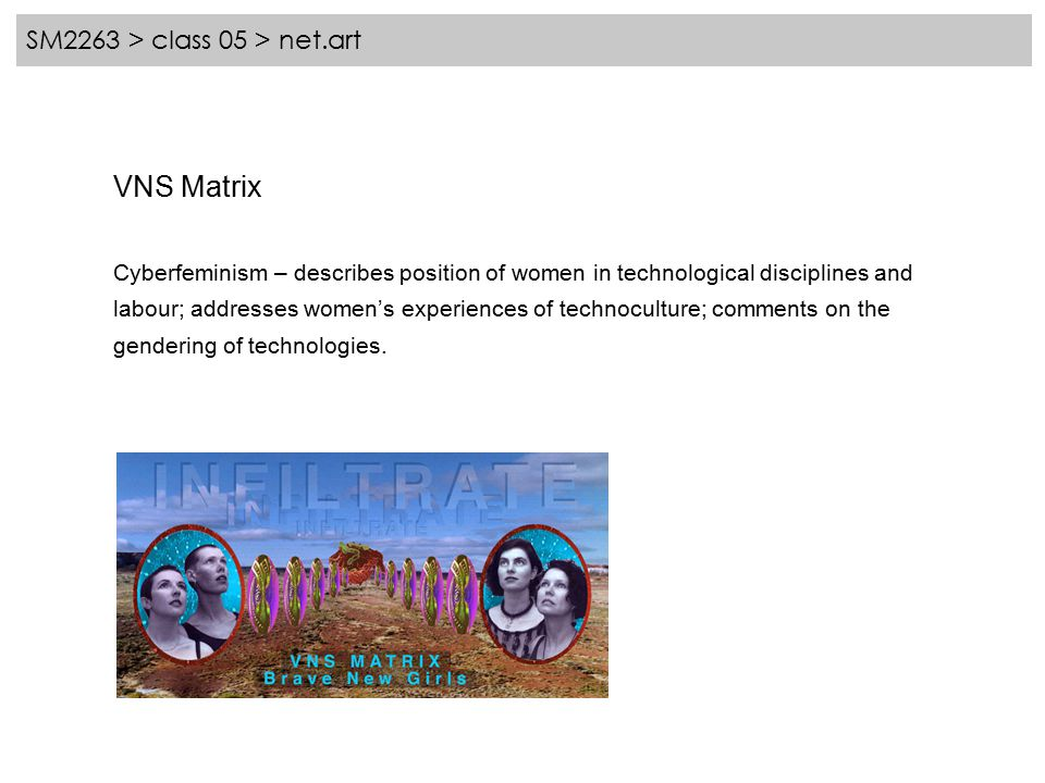 SM2263 > class 05 > net.art VNS Matrix Cyberfeminism – describes position of women in technological disciplines and labour; addresses women's experiences of technoculture; comments on the gendering of technologies.
