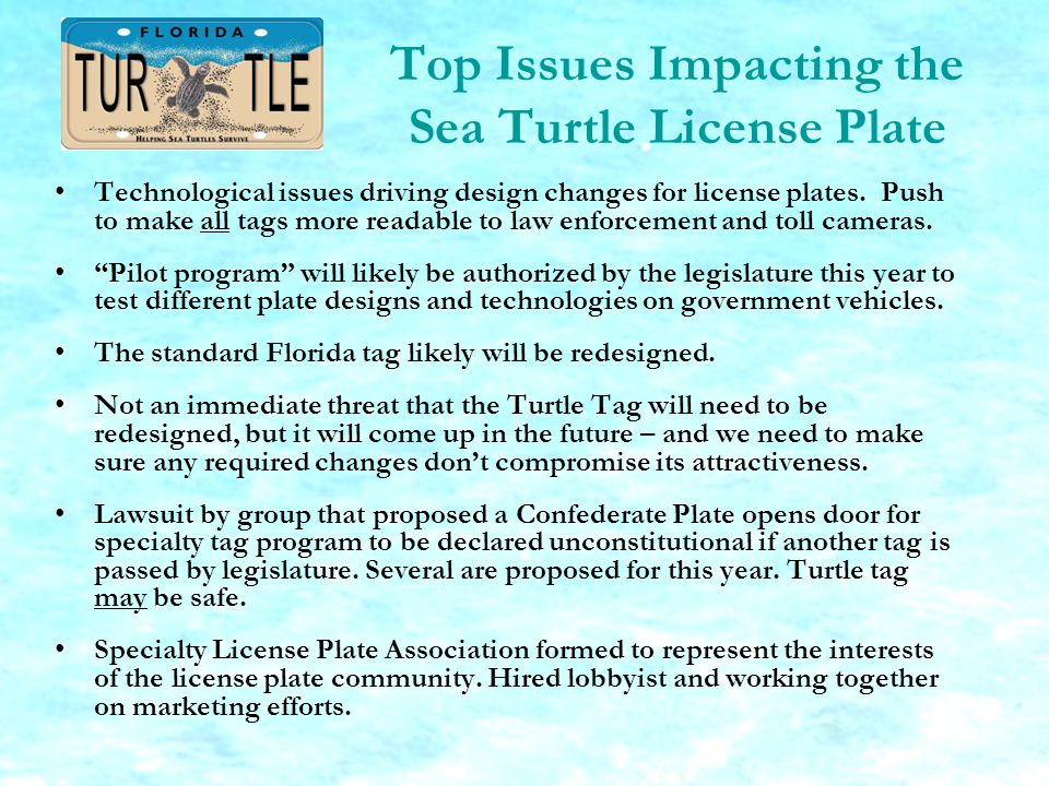 Top Issues Impacting the Sea Turtle License Plate Technological issues driving design changes for license plates.