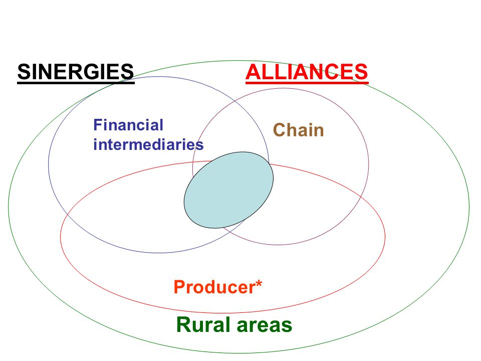Producer* Chain Financial intermediaries Rural areas SINERGIESALLIANCES