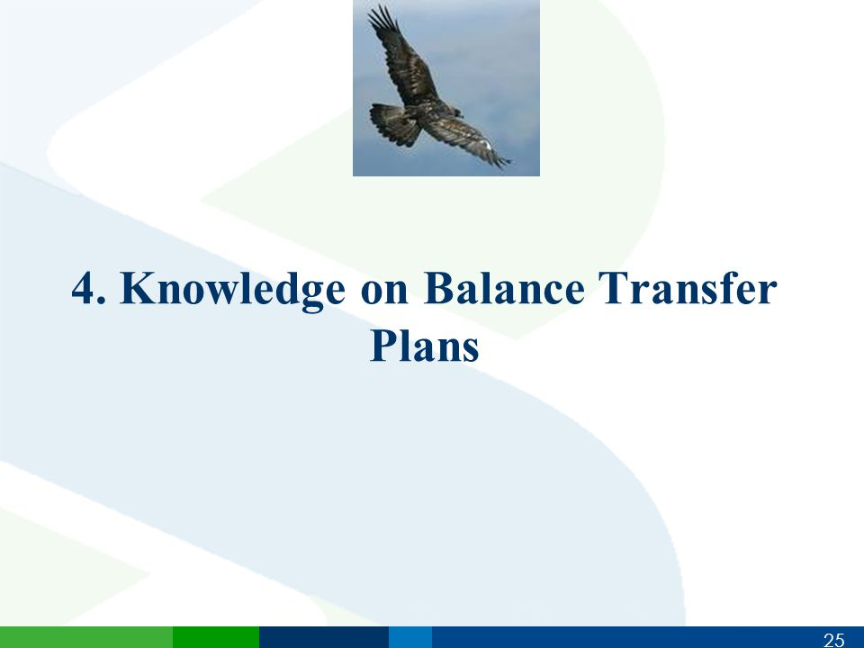 25 4. Knowledge on Balance Transfer Plans