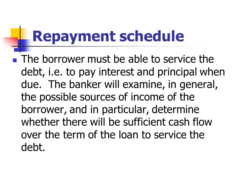 Repayment schedule To support a loan application, a corporate customer is normally required to submit detailed financial statements that will substantiate his capability to generate adequate funds to repay the loan.