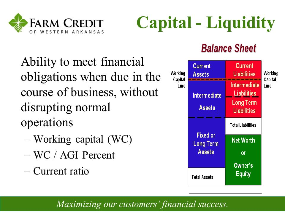 Ability to meet financial obligations when due in the course of business, without disrupting normal operations –Working capital (WC) –WC / AGI Percent