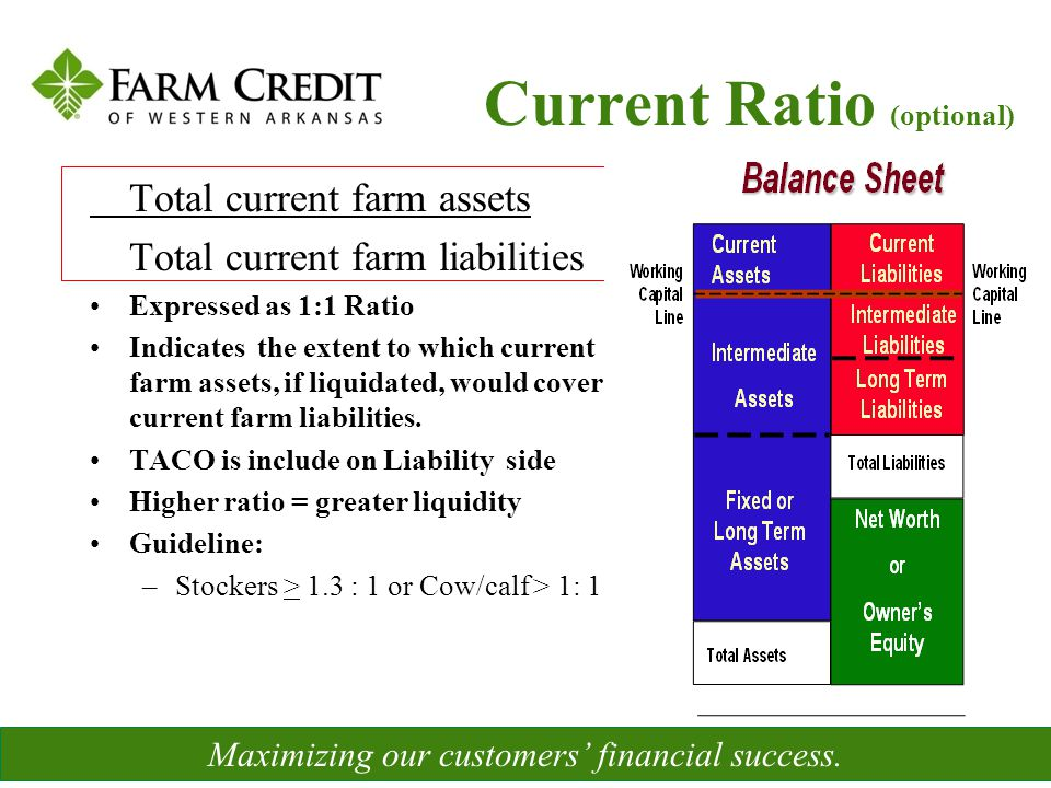 Measures the amount of debt, commitments, and other expense obligations relative to the amount of assets Measures ability to repay if all assets sold Indicates the ability to continue operations as a viable business after financial adversity –Net Worth –Owner's Equity % Maximizing our customers' financial success.